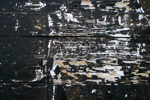 Wood Grunge 36 Texture