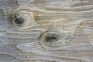 Wood Planks 13