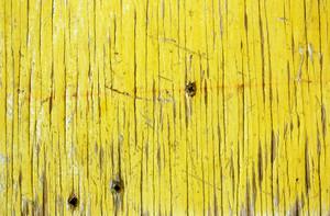 Wood Planks 18