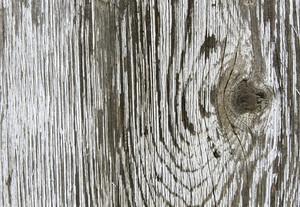 Wood Planks 21