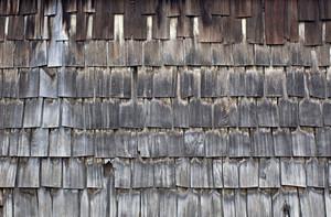 Wood Planks 25