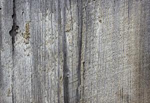 Wood Planks 30