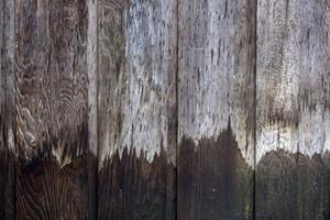 Wood Planks 40