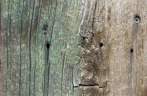 Wood Planks 45
