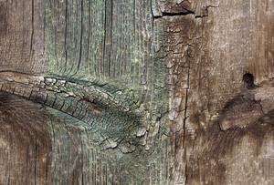 Wood Planks 46