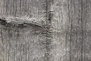 Wood Planks 50