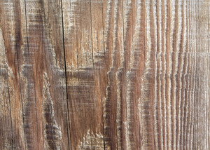 Wood Planks 52