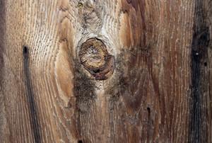 Wood Planks 66
