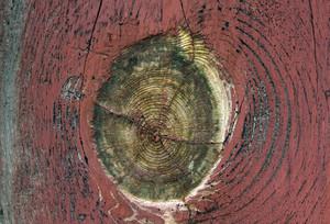 Wood Planks 69