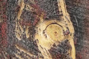 Wood Planks 78