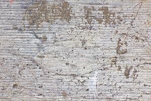 Wood Surface Texture 16
