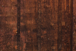 Wood Surface Texture 17