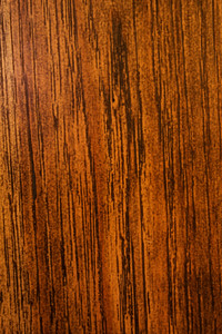 Wood Surface Texture 28