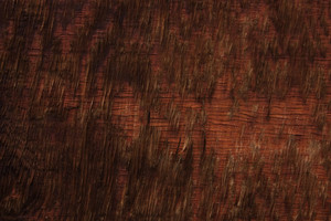 Wood Surface Texture 32