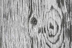Wood Surface Texture 37