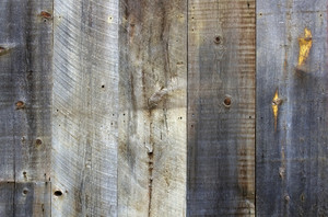 Wood Surface Texture 38