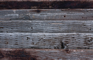 Wood Surface Texture 54