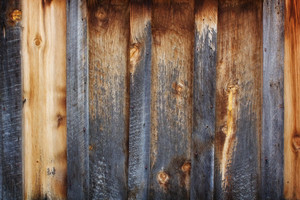 Wood Surface Texture 55