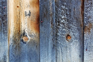 Wood Surface Texture 56