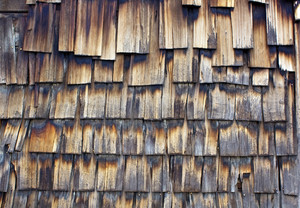 Wood Surface Texture 59