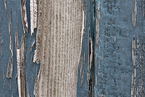 Wood Surface Texture 60