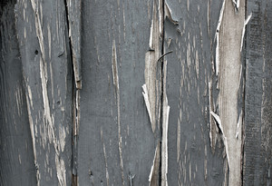 Wood Surface Texture 64