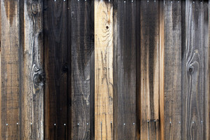 Wood Texture 16