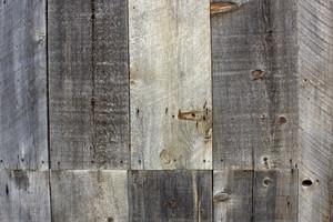 Wood Texture 22