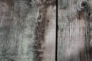 Wood Texture 23