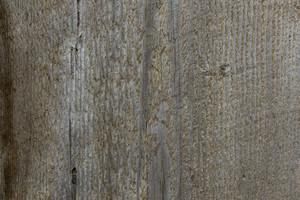 Wood Texture 27
