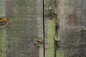 Wood Texture 28