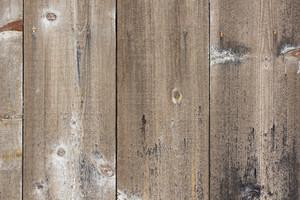 Wood Texture 30