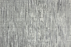 Wood Texture 36