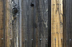 Wood Texture 43