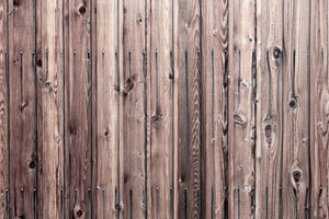 Wood Texture 47