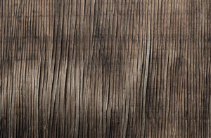 Wood Texture 50