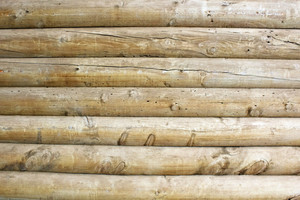 Wood Texture 54
