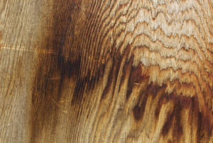 Wood Texture 55