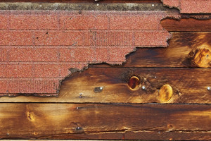 Wood Texture 59