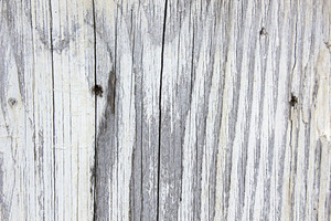 Wood Texture 61