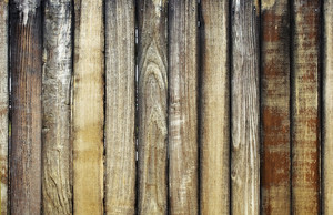 Wood Texture 62