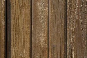 Wood Texture 72