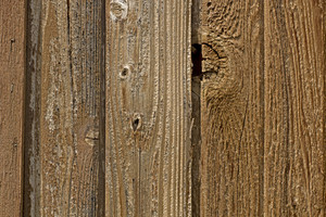 Wood Texture 73