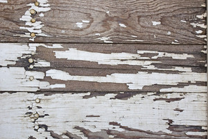 Wood Texture 76