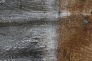 Wood Texture Backdrop
