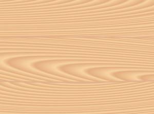 Wood Texture. Vector.