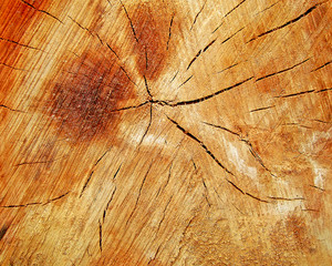 Wood_background