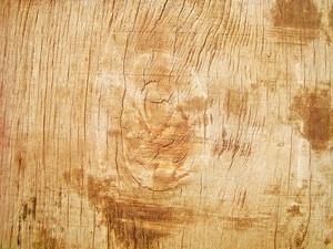 Wood_bg