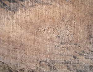 Wood_surface