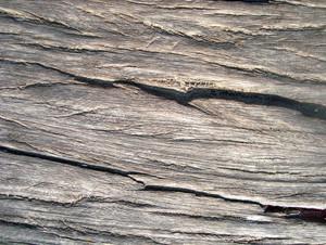 Wood_texture_design